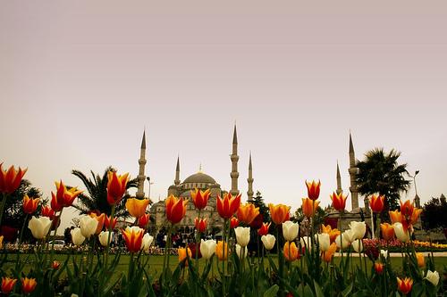ورود اسطنبول
